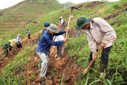Do làm tốt công tác tuyên truyền, vận động, từ 12 ha trồng thí điểm, đến nay toàn huyện Than Uyên đã trồng được gần 500 ha cây cao su tại 3 xã: Mường Kim, Mường Cang và Mường Mít.