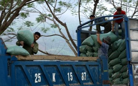 Các doanh nghiệp tiêu thụ hàng nông sản bắt đầu quay trở lại cửa khẩu Ma Lù Thàng, huyện Phong Thổ