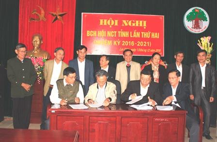 Đại diện lãnh đạo Ban đại diện Hội NCT các huyện, thành phố  ký kết thi đua năm 2017