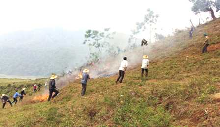 Các lực lượng thực hành chữa cháy