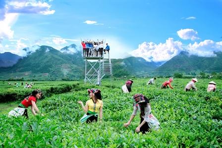 Phát triển sản xuất nông nghiệp gắn với phát triển du lịch sinh thái là thế mạnh của huyện Tân Uyên